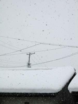 snow_060103_s