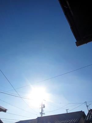 快晴の大晦日午前