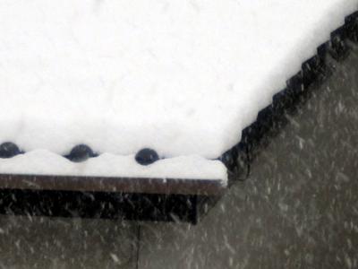 2016年冬、はじめての大雪 1