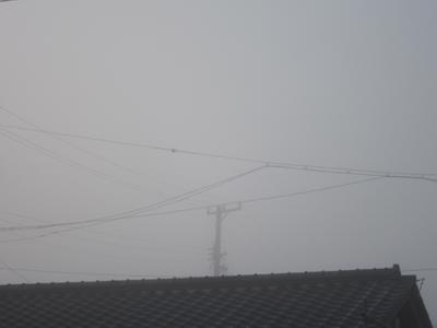 霧の朝 1